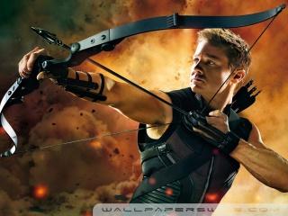 hawkeye_in_the_avengers-wallpaper-320x240